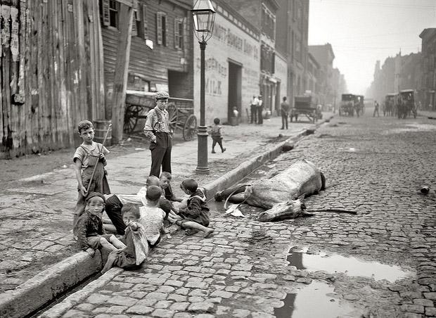 children-and-dead-horse-street-in-new-york-c-1895.jpg