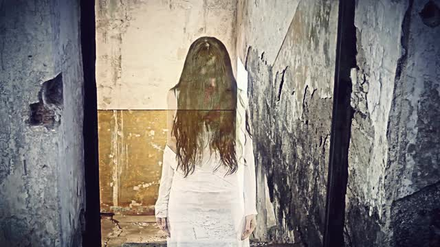 witch-abandoned-house-sun-window-single-the-ghost-of-a-woman-with-long-hair-a-demon-witch-appears-between-the-ruins-of-an-abandoned-houses-sunny-window-horror-halloween-mystery_vy0w1mr-g__M0008.jpg